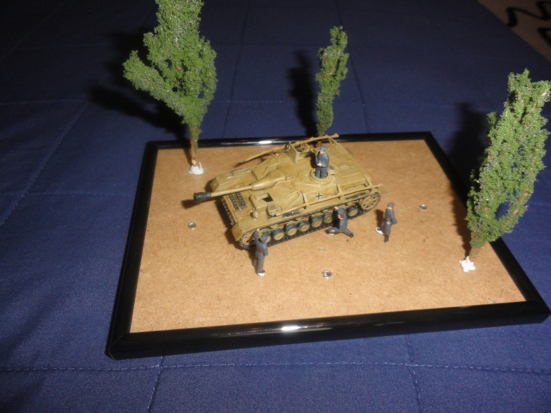 Diorama Sturmgeschutz IV 1/72 Dsc01812