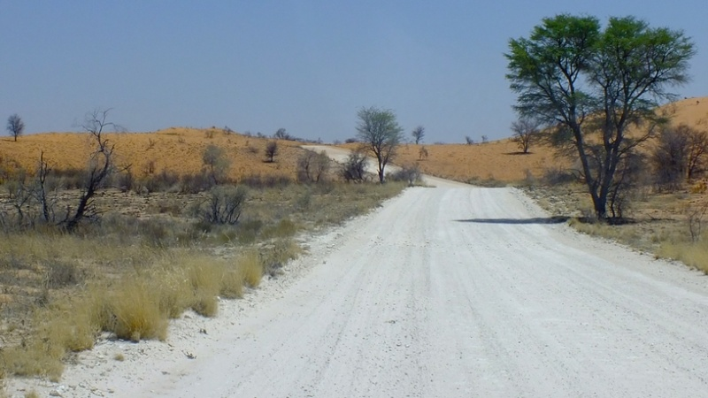 Wip de MarcH : Rhinotaure Maasai Dscf4010