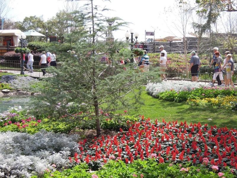 Séjour à Orlando du 26/02 au 04/03 2012 (Universal, WDW, Winter Park) - Page 3 Dscn4912