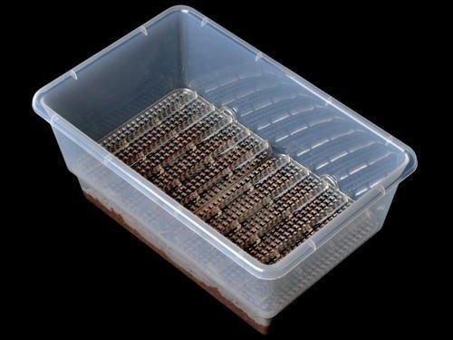 Substrat pour incubation Boite_12