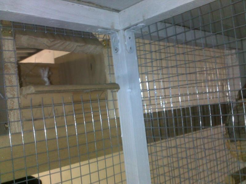 Mes cages et installations pour mes diamants mandarins 09082013