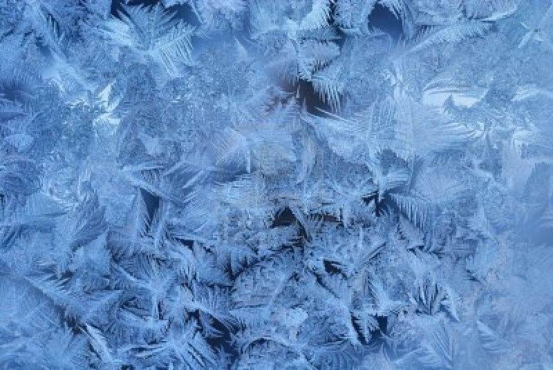 Siegergalerie Winter10
