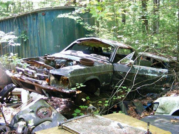 D'autre photos d'épave de Mustang 1967 1968 3_bmp10