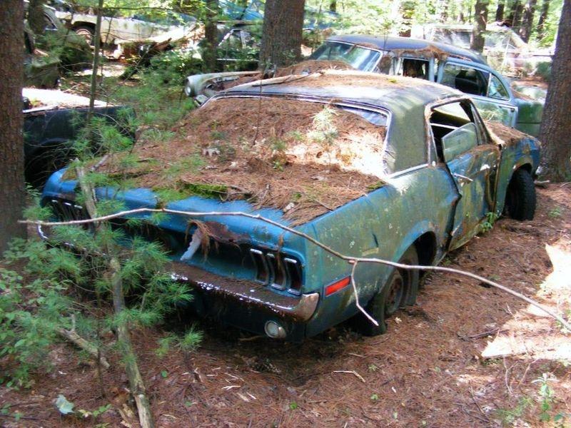 D'autre photos d'épave de Mustang 1967 1968 66_bmp10