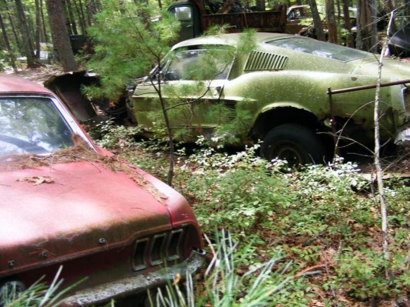 D'autre photos d'épave de Mustang 1967 1968 Custom10