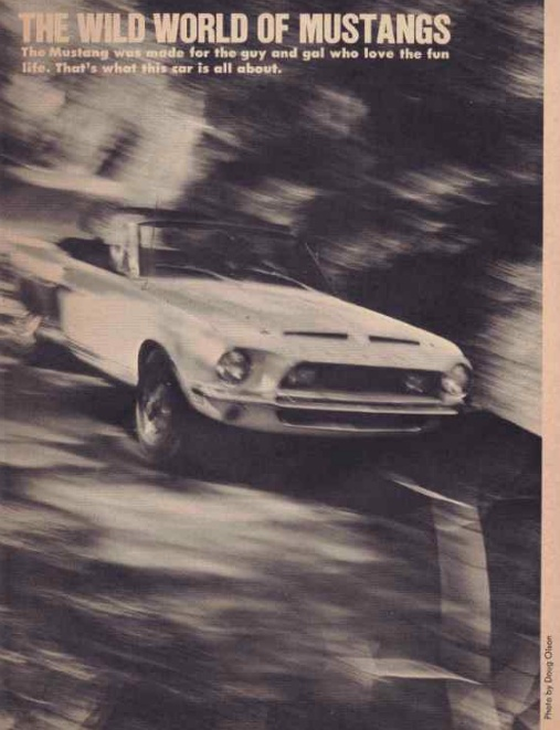 Quelque photo original de Shelby 1968 Nouvel33