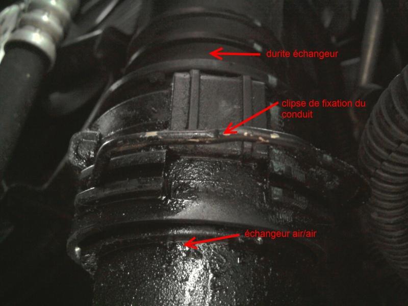 [ Renault Laguna III 2.0 DCI 150ch ] changement poulie débrayable alternateur (TUTO) 2011-079