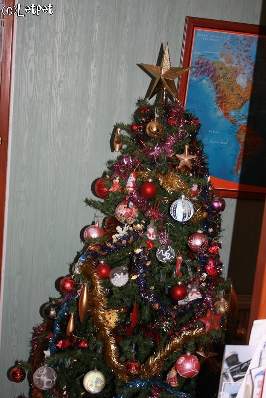 Votre décoration de Noel - Page 3 Img_4616