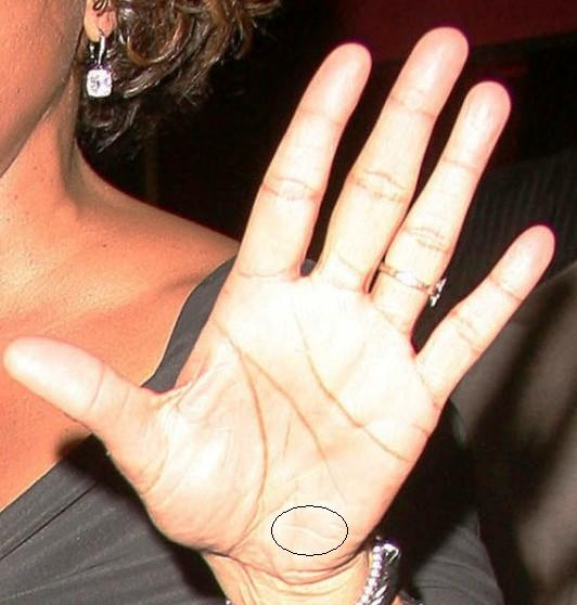 Whitney Houston 1963 – 2012 (HAND ANALYSIS) Housto12