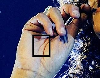Whitney Houston 1963 – 2012 (HAND ANALYSIS) Whitne11