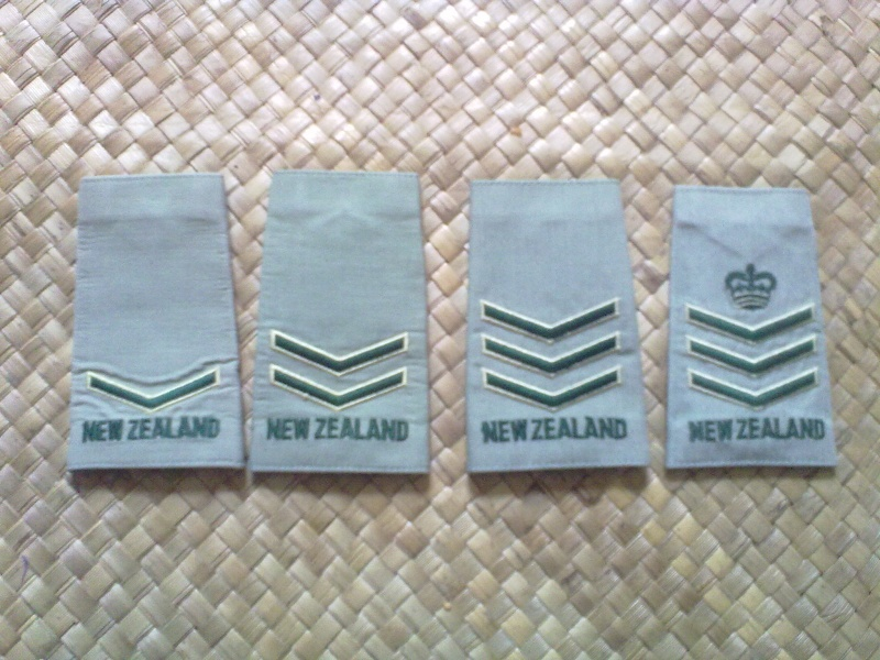 Brassards ,Rank slides and badges 13092034