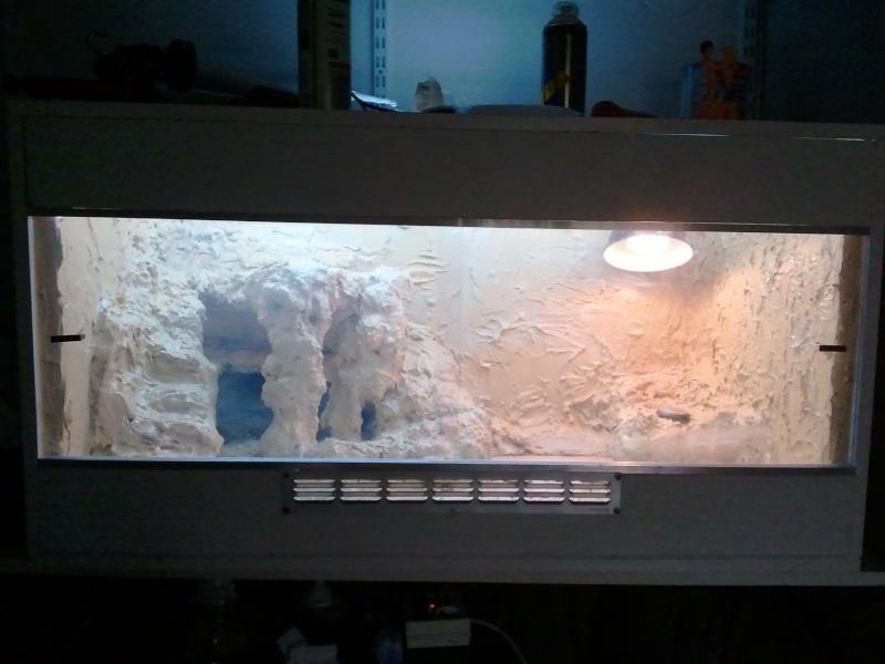 Terrarium en cours de  construction  - Page 2 12_110