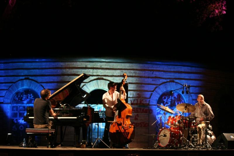 Peperoncino Jazz Festival 2012. Brad_m11
