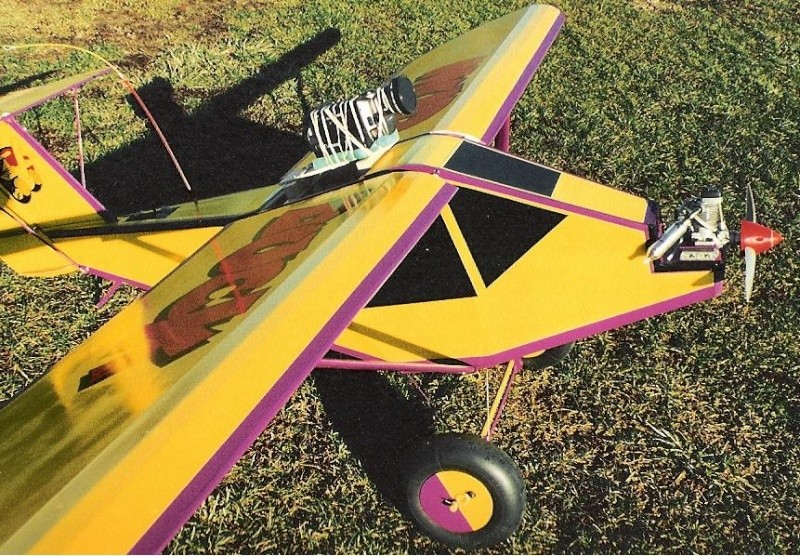 Anyone here into Giant Scale R/C Planes? Post Pics of your Planes. Barn_s12