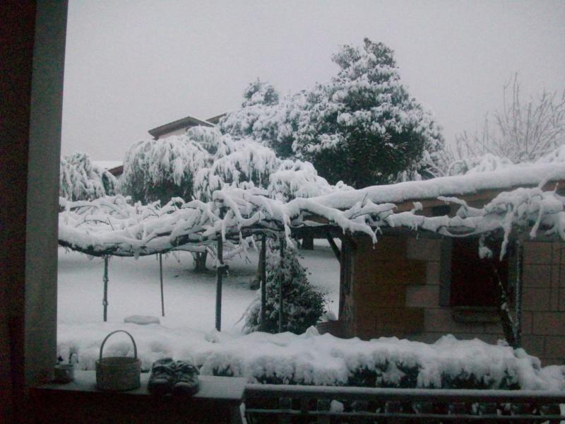 situazione neve 100_5110