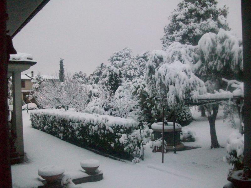 situazione neve 100_5111