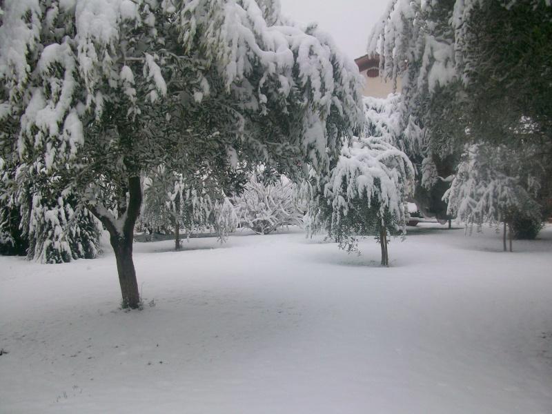 situazione neve 100_5113