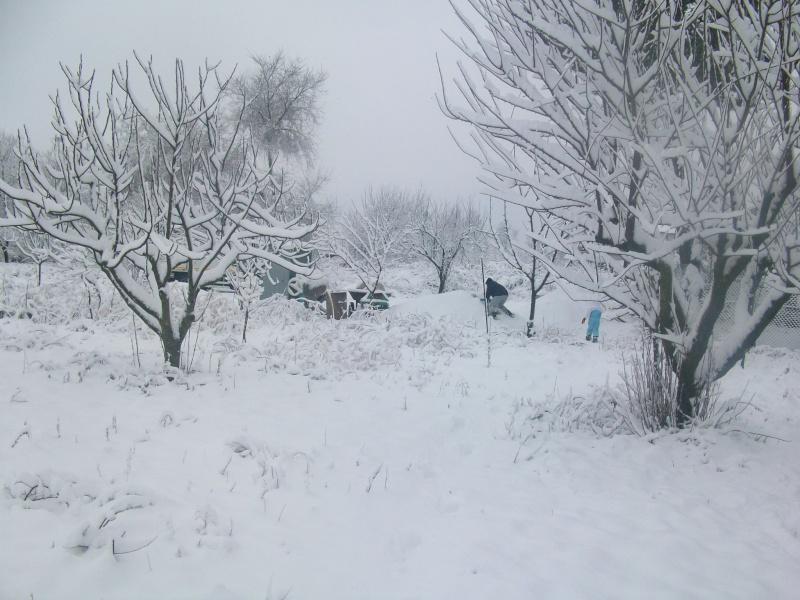 situazione neve 100_5116