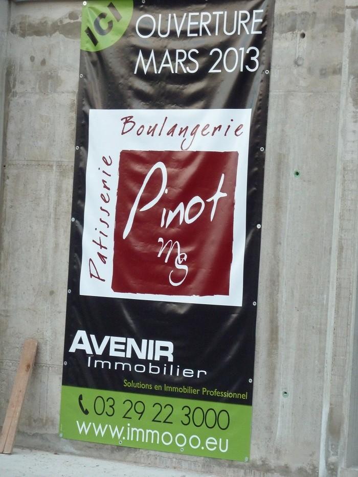 Eco Quartier de la Madeleine à Remiremont - Page 4 P1010123