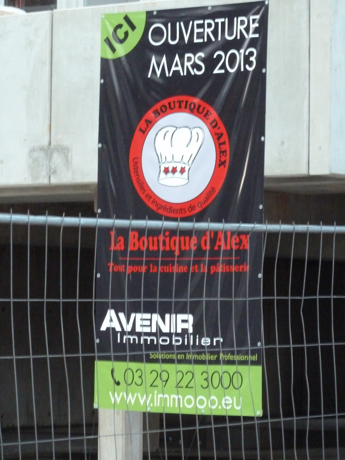 Eco Quartier de la Madeleine à Remiremont - Page 4 P1010126