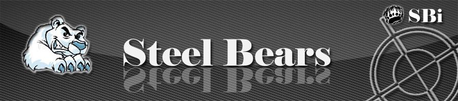 Steel Bears International