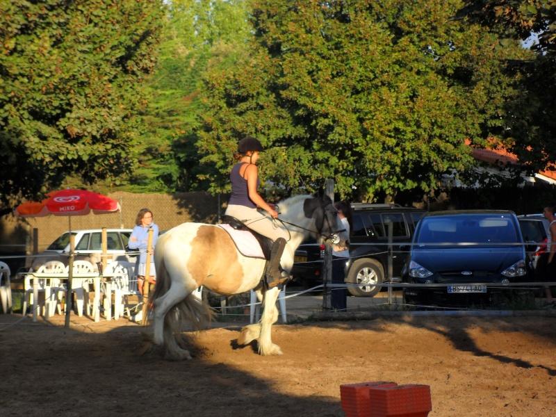 chevaux, rencontre,vacances... Sam_2510
