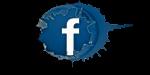 Facebook Vipaint