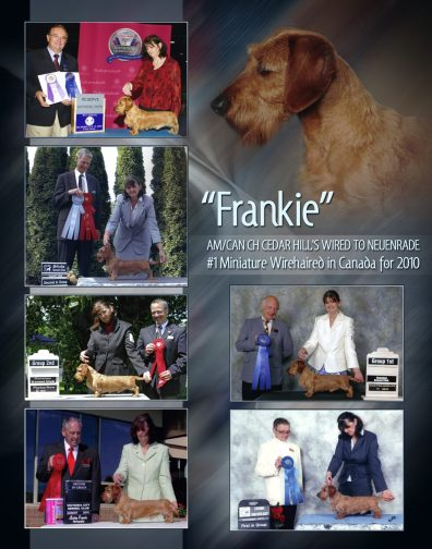 Molly and Frankie Collag10