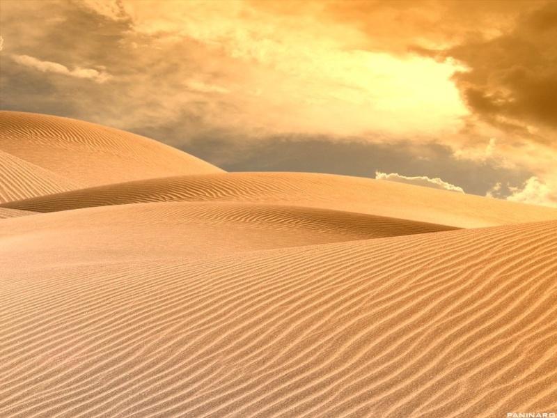 I deserti - Wiki Info Dune_n10