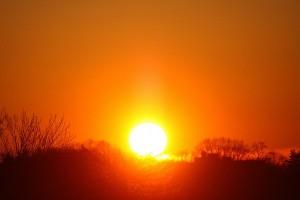 Il Sole Sole-310