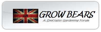 GrowBears.Com