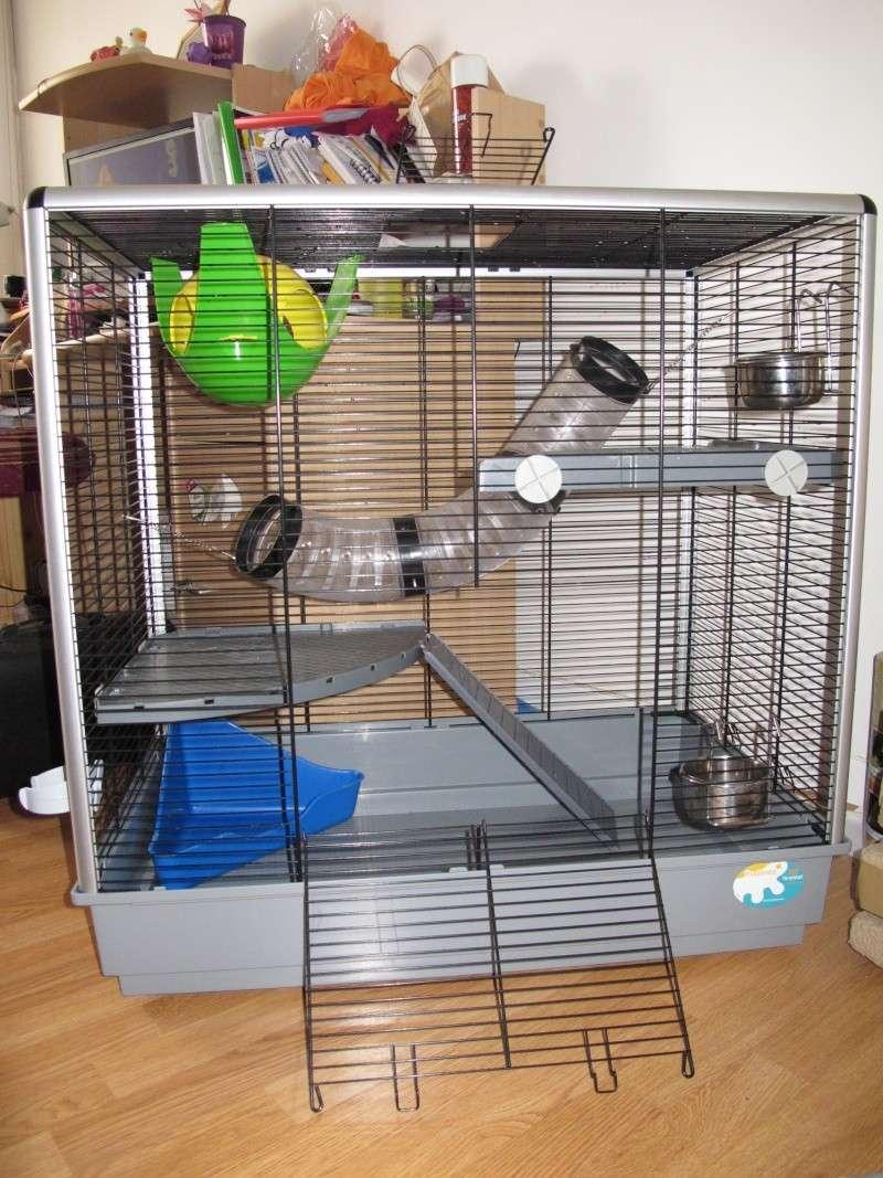 Vend cage Jenny et accessoires Img_3812