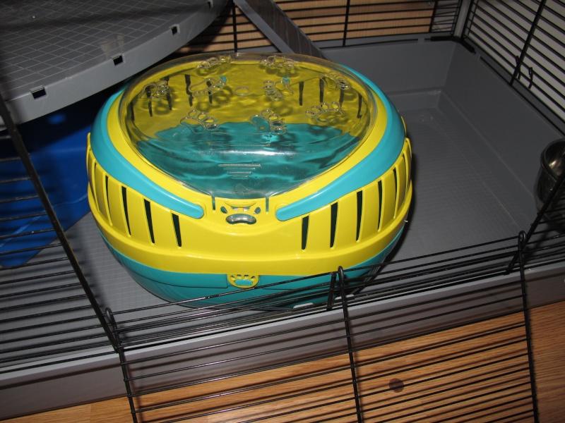 Vend cage Jenny et accessoires Img_3814