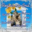 Preum's du jour - Page 15 Bon_je13