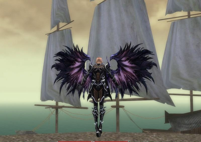 New wings!!! Flight11