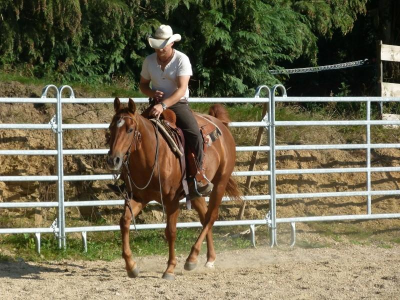 Les Juments du MH West Ranch P1000410