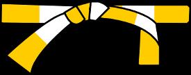 Demi jaune BUDOKA