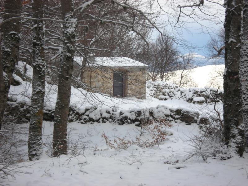 foto dei posti in cui viviamo Casett10