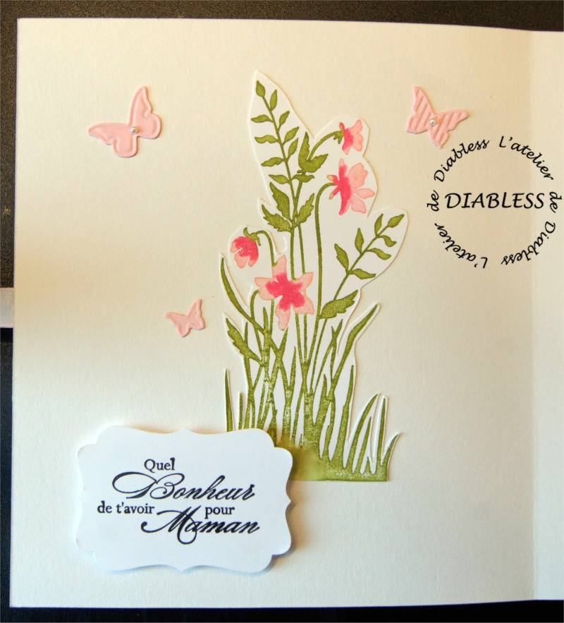 Atelier Stampin Up le 19 Mai - Page 2 Fate_d11