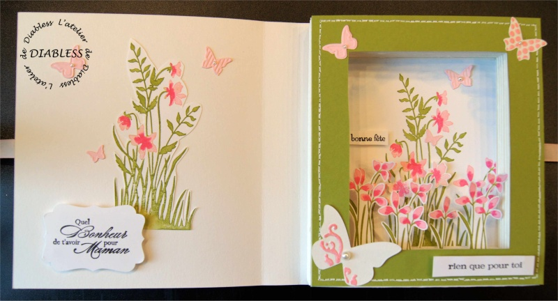 Atelier Stampin Up le 19 Mai - Page 2 Fate_d13