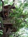 Chalé das Caçadoras de Ártemis Treeho11