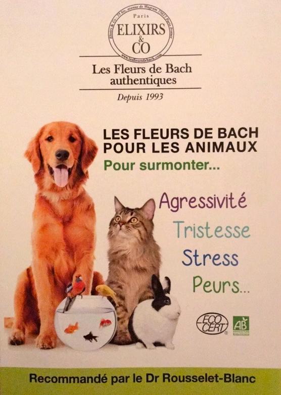 Fleurs de Bach pour chats 8be3fc11