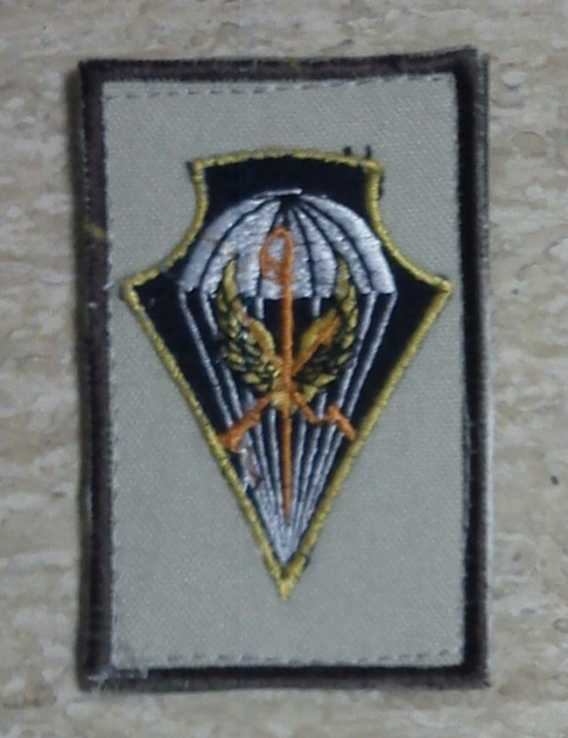 Can you ID Coalition patches from Afghanistan? Para_u10