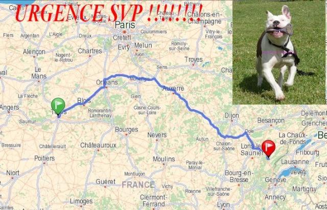 URGENCE POUR DESTI (tours 37000............> chaux des crotenay 39150) Covoit10