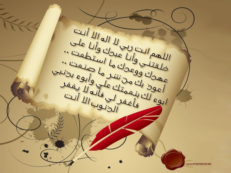 بقطز والعز يتحقق النصر 28090111