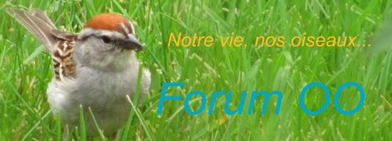 Amateurs-nature du Québec et de la France