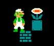 Mario Bros Nes (Présentation et images) Fleur_10