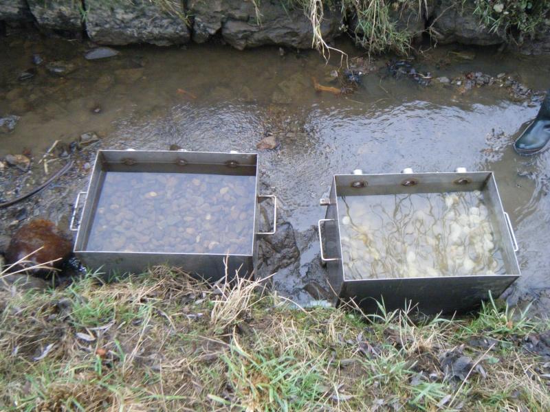 incubateurs à substrat profond  34210