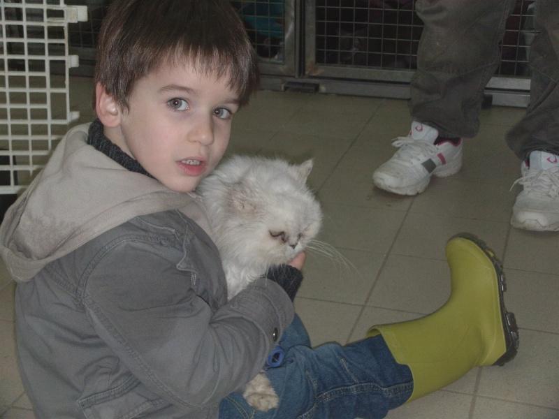 ROSY en famille d'accueil à vie Dvci0515