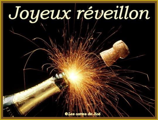 Bonnes Fêtes et Meilleurs Vœux à tous pour 2012 - Page 4 Dyn00111